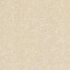 Gạch lát nền TS2-812