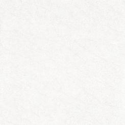 Gạch lát nền ECO-M601