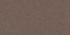 Gạch ốp tường Viglacera UM3604