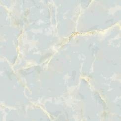 Gạch lát nền H505 50x50
