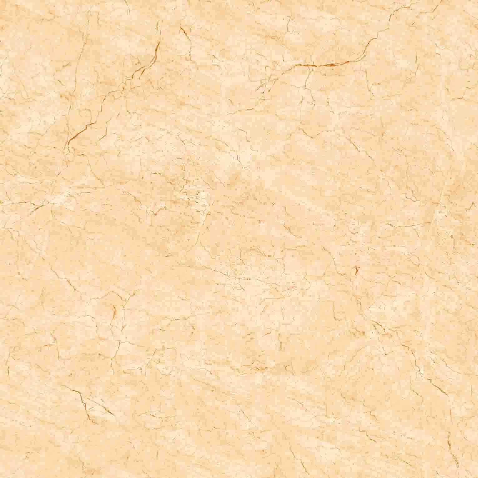 Gạch lát nền H503 50x50
